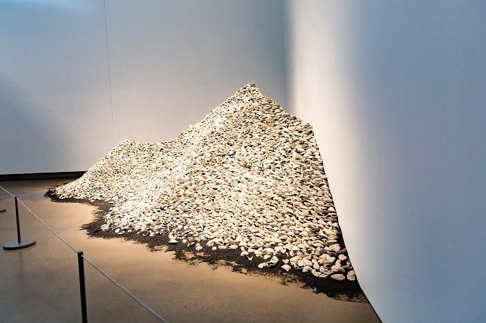 midden pile shells goma