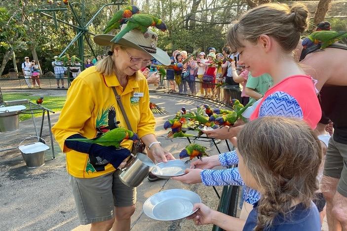Girls feeding lorikeets at Currumbin Wildlife Sanctuary