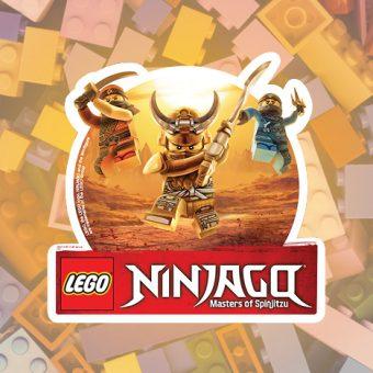 Lego Ninjago Zone