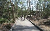 Boondall Wetlands - Boardwalk Entrance