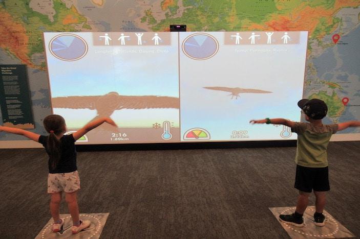 Boondall Wetlands - Interactive Display