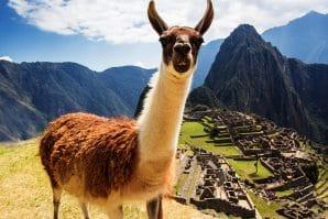 Machu Pichu Virtual Tour