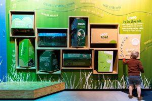 nature exhibit in environment centre