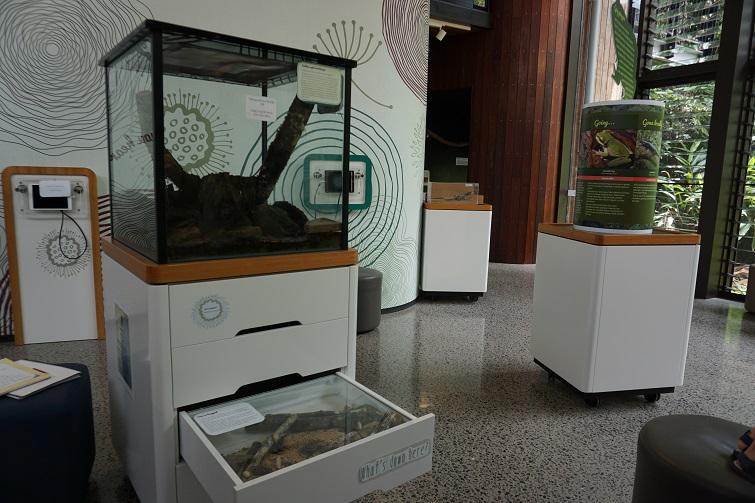 marycairncross sunshine coast, natural museum, exhibit