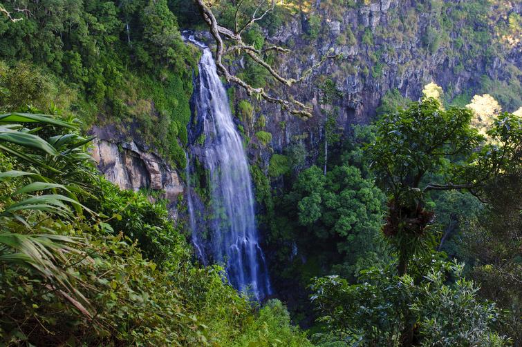 Morans Falls in Lamington National Park