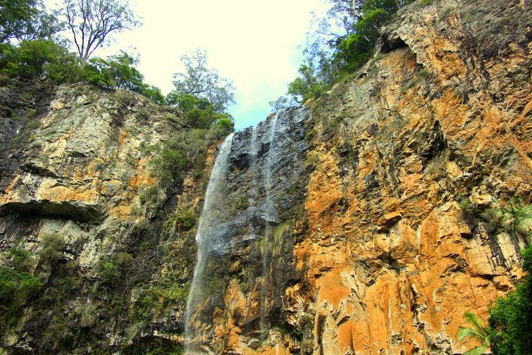 Purling Brook Falls in Springbrook National Park, Gold Coast Hinterland