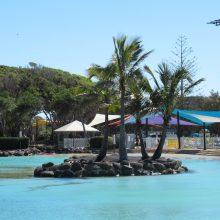 Redcliffe lagoon_Island 1