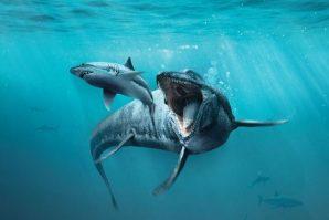 Sea Monsters exhibition
