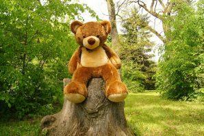 Teddy bear in the park