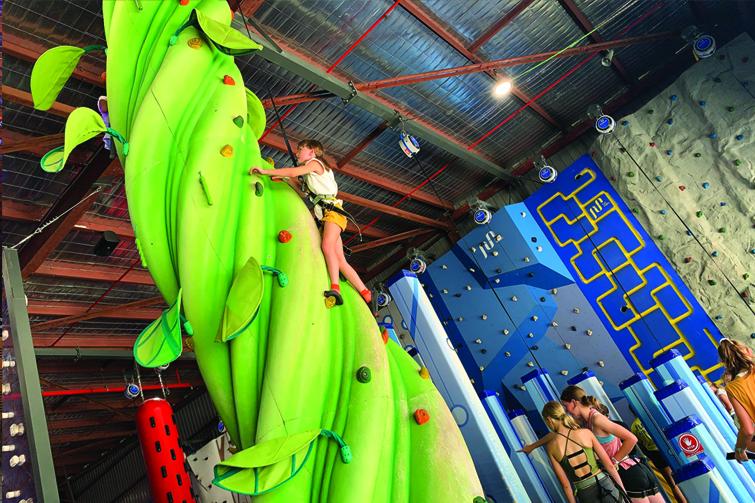 Skyclimb girl climbing beanstalk