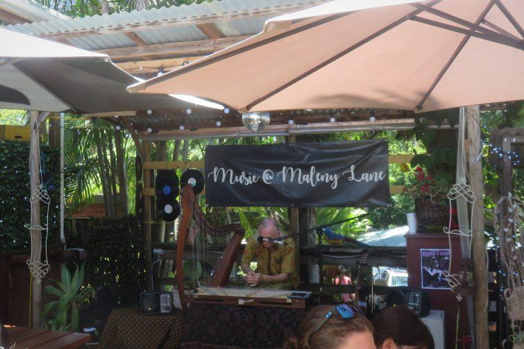 Musician playing an instrument at an outdoor food market