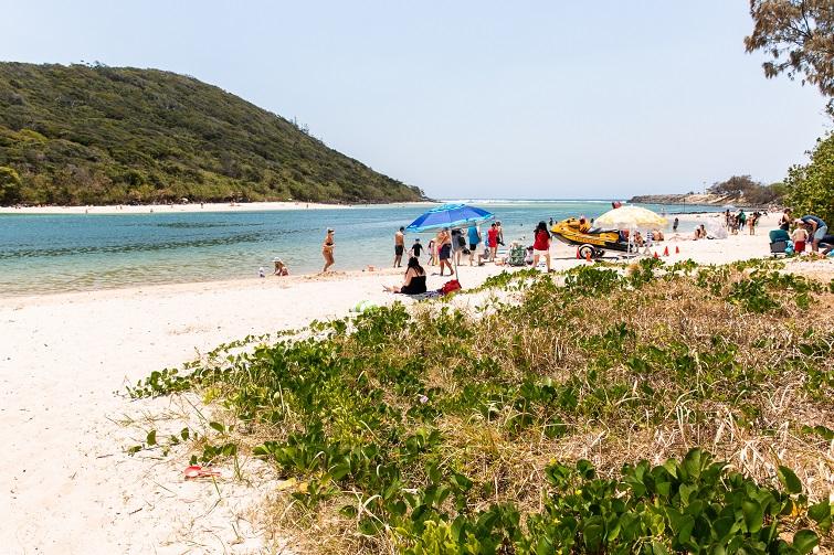 family friendly beach, tallebudgera