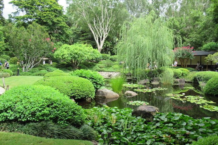 Botanic Gardens Mt Coot-tha Japanese Garden