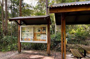 Buderim tramway walk picnic tables