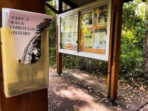 Buderim tramway walk historical information