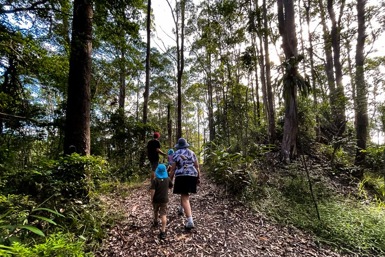 Buderim Tramway Walk great for families