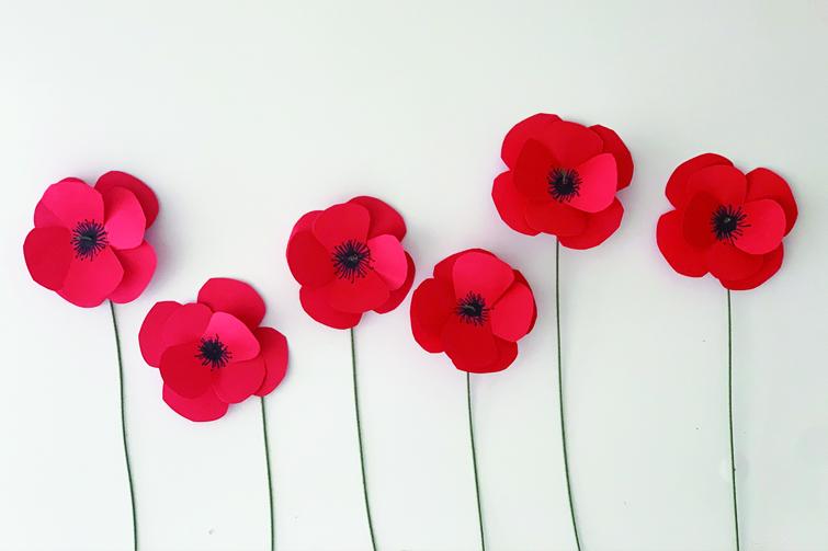 paper anzac poppy