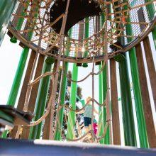 Aura treehouse climbing