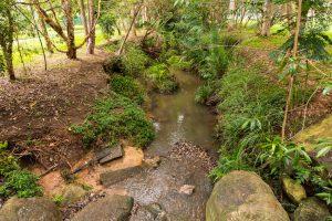 homestead park creek