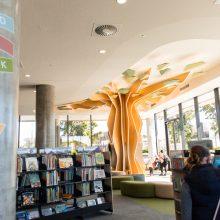 Ipswich Children's Library large windows