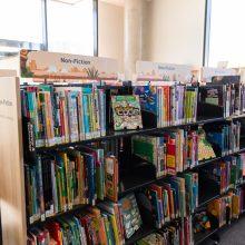 Ipswich Children's Library non fiction