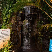 Bellingham Maze magic waterfall